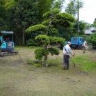 茂原市 雑木の庭