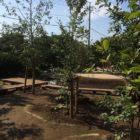 茂原市 雑木の庭 〜自然な池〜