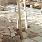 石像の似合う庭
